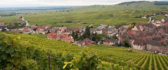 Visite de l'Alsace et rencontre avec Frédérique Ries