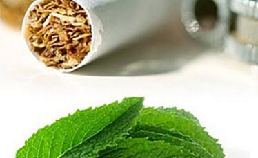 Directive tabac, lendemain de vote.