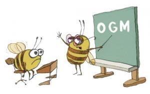 OGM (1)