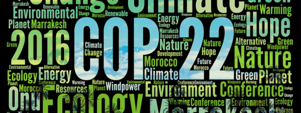 COP22 sur le climat : que faut-il en retenir ?