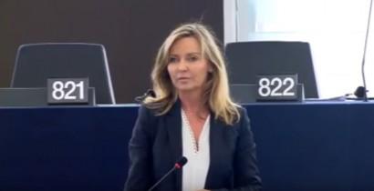 Intervention plénière : sur la pollution atmosphérique