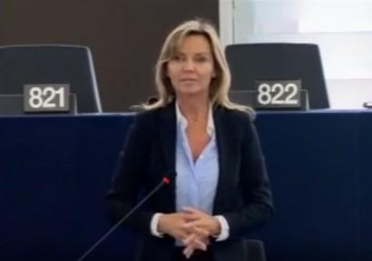 Intervention plénière : sur le clonage des animaux